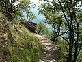 2008 0707 80800 Hiking in South Tyrol Naturns R0655.jpg