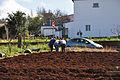 2010-03-03 15 51 29 Portugal-Santana.jpg