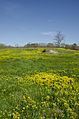 2012-Apr-28-Charles-River-Pinensula.jpg
