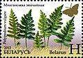 2012. Stamp of Belarus 13-2012-04-m1.jpg