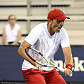 2014 US Open (Tennis) - Qualifying Rounds - Andreas Beck (14872958740).jpg