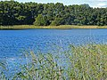 2015-09-28 Rochowsee 016.jpg