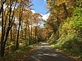 2015-10-07 12 33 09 View west along National Forest Road 112 in the Spruce Knob-Seneca Rocks National Recreation Area in Pendleton County, West Virginia.jpg