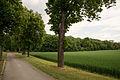 20150514 Schlosspark Schoenkirchen 010sRGB hi.jpg