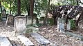 20171004 140511 Old Jewish Cemetery in Bacău.jpg