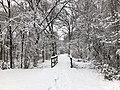 2018-03-21 12 58 52 View along a snow-covered walking path as it crosses a bridge in the Franklin Farm section of Oak Hill, Fairfax County, Virginia.jpg