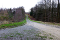 2018-12-22-December-watercolors.-Hike-to-the-Ratingen-forest. File-05.png