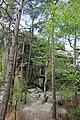 20210518. Sächsische Schweiz.Rauenstein.-047.jpg
