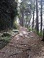 25080 Tignale, Province of Brescia, Italy - panoramio (1).jpg