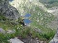 38038 Tesero, Province of Trento, Italy - panoramio (2).jpg