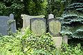 9768viki Cmentarz Żydowski na Ślężnej. Barbara Maliszewska.jpg
