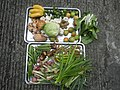 9988Cuisine food of Bulacan 02.jpg