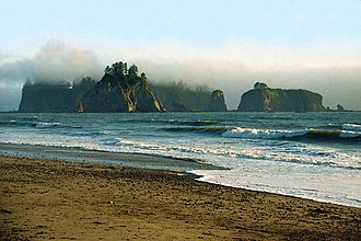 Olympic National Park - Foggy sea stacks