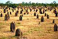 A168, Queensland, Australia, Matilda Highway, termite mounds, 2007.JPG