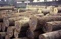 ASC Leiden - van Achterberg Collection - 1 - 011 - Stockage du bois dans le port - Kribi, Cameroun - 6-12 février 1997.tif