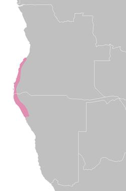 AT1310 map.png