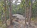 A big stone.jpg
