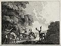 A group of fallow deer stags drinking from a stream. Etching Wellcome V0021535.jpg