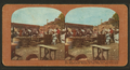 A temporary relief camp, police headquarters and registration bureau, Van Ness Ave., San Francisco, from Robert N. Dennis collection of stereoscopic views 2.png