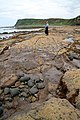A wave-cut platform at Bracken Bay - geograph.org.uk - 806874.jpg