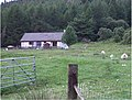 A woodside cottage - geograph.org.uk - 485187.jpg