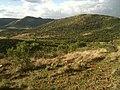 Aasvoelkop - Vredefort dome - panoramio.jpg