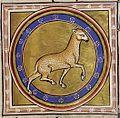 Aberdeen Lamb.jpg
