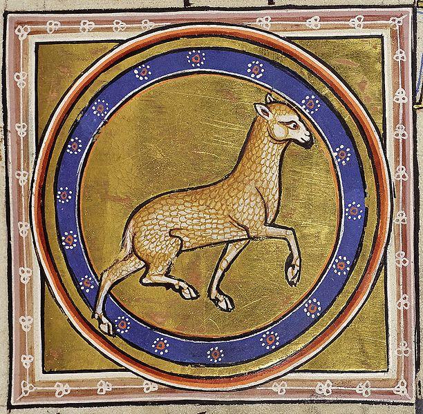 File:Aberdeen Lamb.jpg