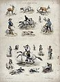 Above, deer, hounds, huntsmen, poachers and mounted hunters, Wellcome V0020439.jpg