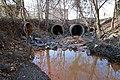 Accotink Creek source 2021.jpg