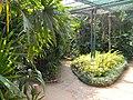 Acharya Jagadish Chandra Bose Indian Botanic Garden - Howrah 2011-03-20 2066.JPG
