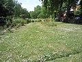 Acton Green Common - geograph.org.uk - 2438474.jpg
