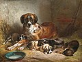 Adam, Benno, Bernese Mountain Dog and Her Pups.jpg