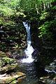 Adams Falls 1.JPG