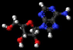 Adenosine - Image: Adenosine 3D balls