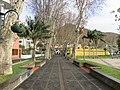 Alameda dos Plátanos, Machico, Madeira - IMG 5737.jpg