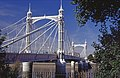Albert Bridge - geograph.org.uk - 1970429.jpg