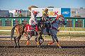 Alberta Breeders' Fall Classic 2014 - Horse Racing (15117979750).jpg
