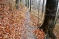 Albtrauf Wanderweg - panoramio.jpg