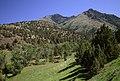 Aldrich Mountains, Malheur National Forest (35502381704).jpg