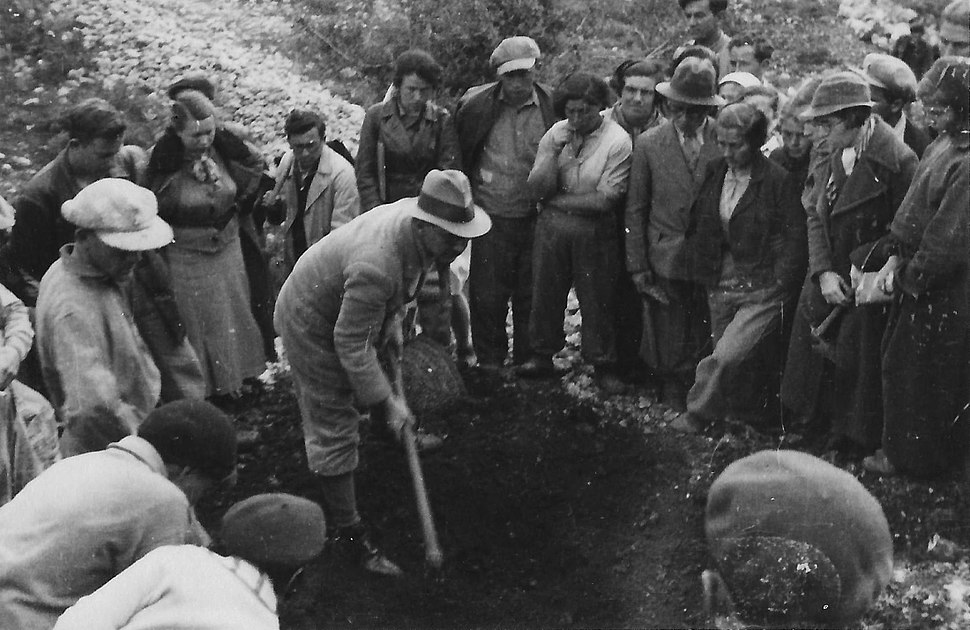 Alexander Eig Laying the Groundwork for the Botanical Garden on Mount Scopus