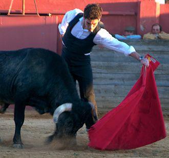 Alexander Fiske-Harrison - Fiske-Harrison toreando, 'bullfighting', in Palma del Río, Córdoba province, Spain
