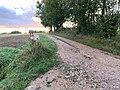 Allée Pré Vernay St Cyr Menthon 3.jpg