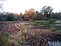 Allan's Mill pond, October, 2009 (5020619585).jpg