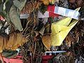 Am Gedenkbaum an der Dreisam in Freiburg-Waldsee, in der Nähe des Fundortes (1).jpg