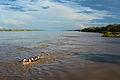 Amazonas, Iquitos - Leticia, Kolumbien (11472506936).jpg