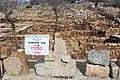Ancient Shiloh IMG 2919.JPG
