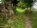 Ancient track around Calver Peak - geograph.org.uk - 254835.jpg