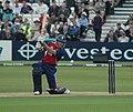 Andrew-Strauss-Cricketer.jpg