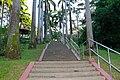 Ang Mo Kio Town Garden West Singapore - panoramio (2).jpg
